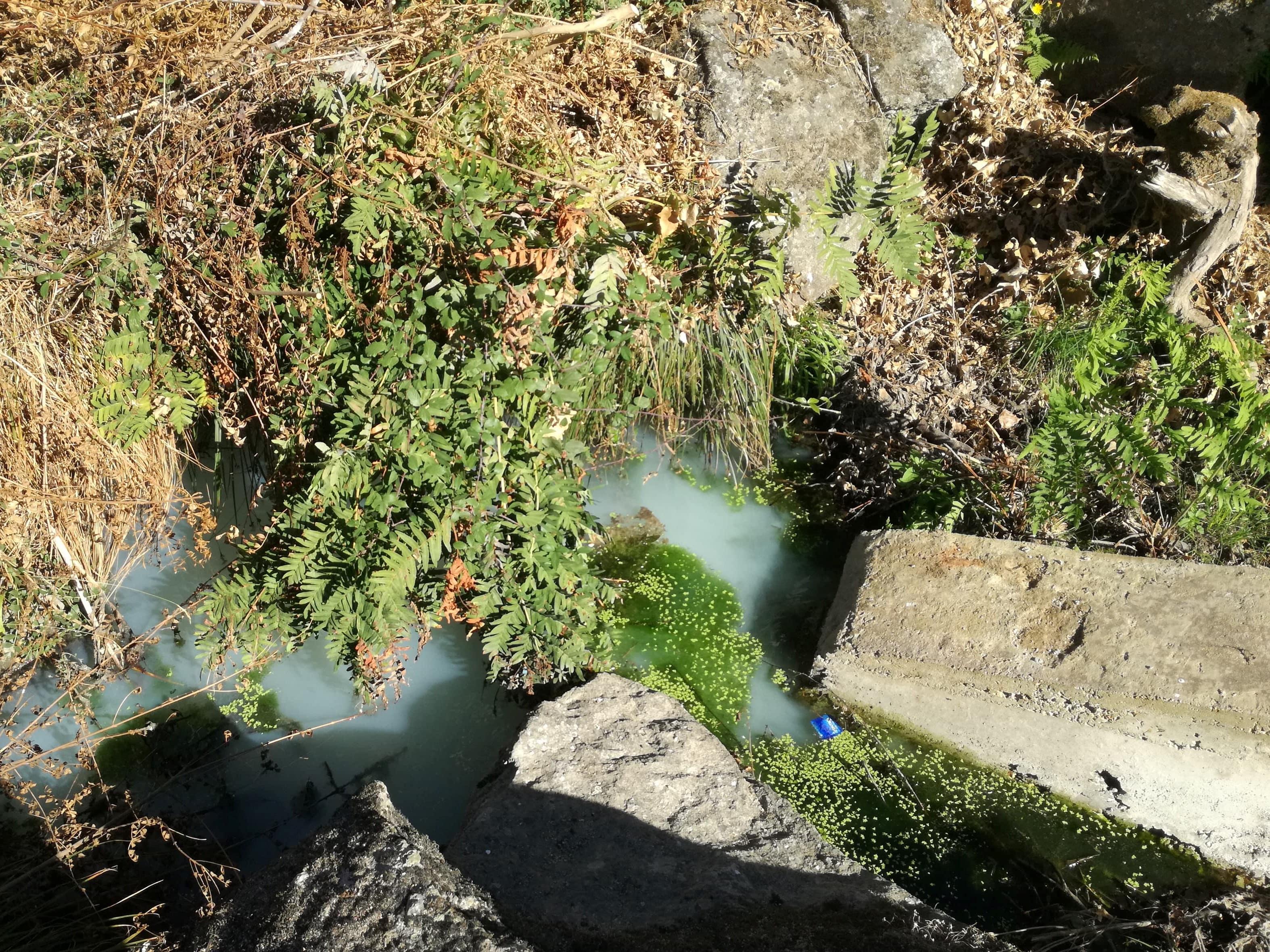 Novas descargas ilegais no Rio Balsemão levam a denúncia do Bloco de Esquerda