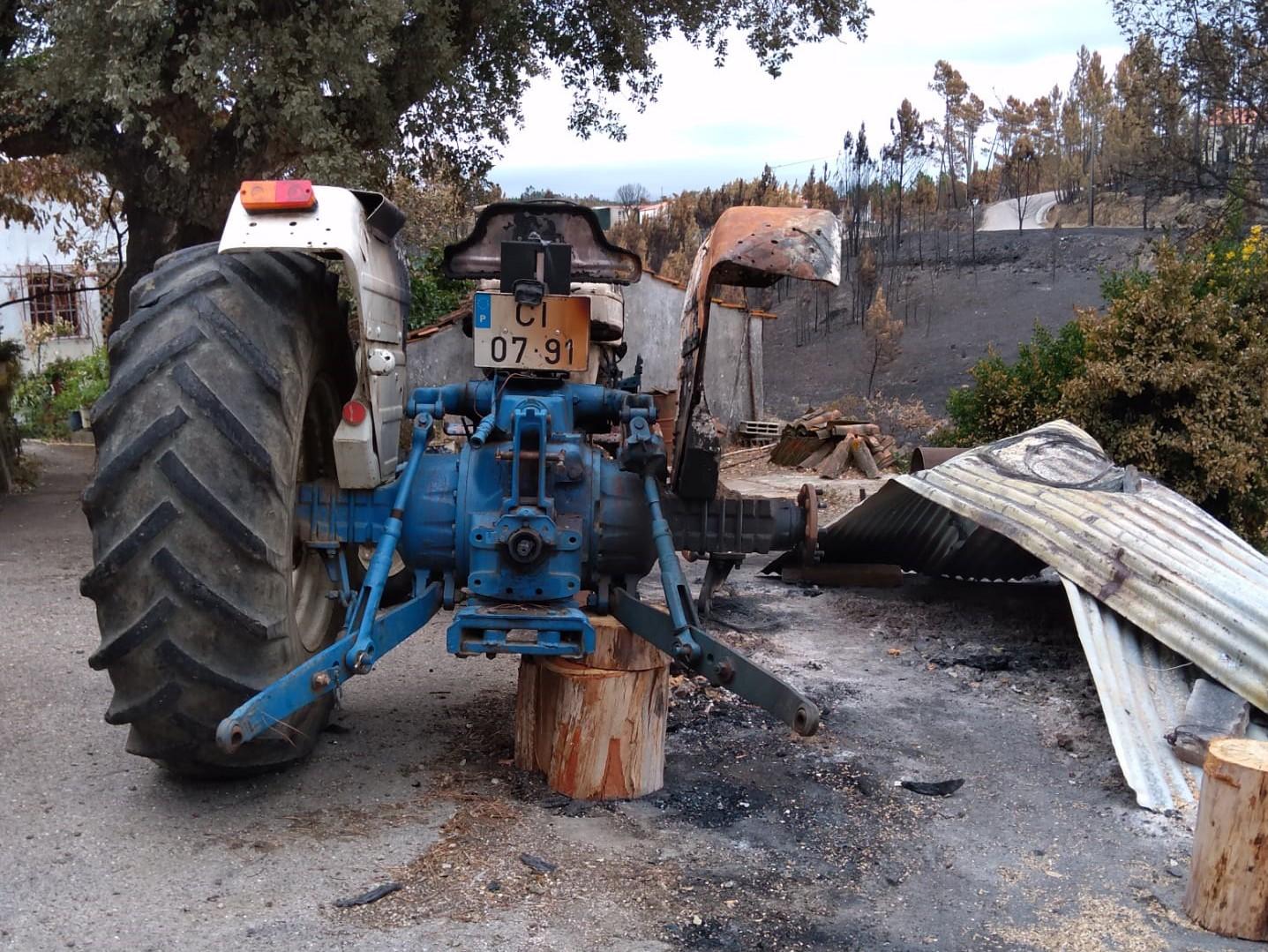 Incêndios dizimam região do Pinhal no distrito de Castelo Branco