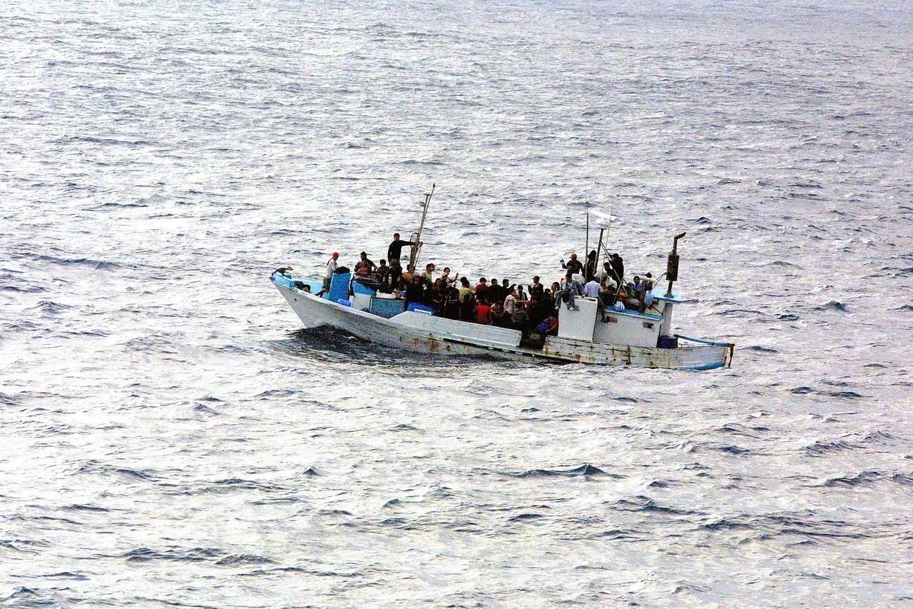 Assembleia Municipal de Viseu e da Guarda aprovam Voto de Saudação ao Dia Mundial dos Refugiados