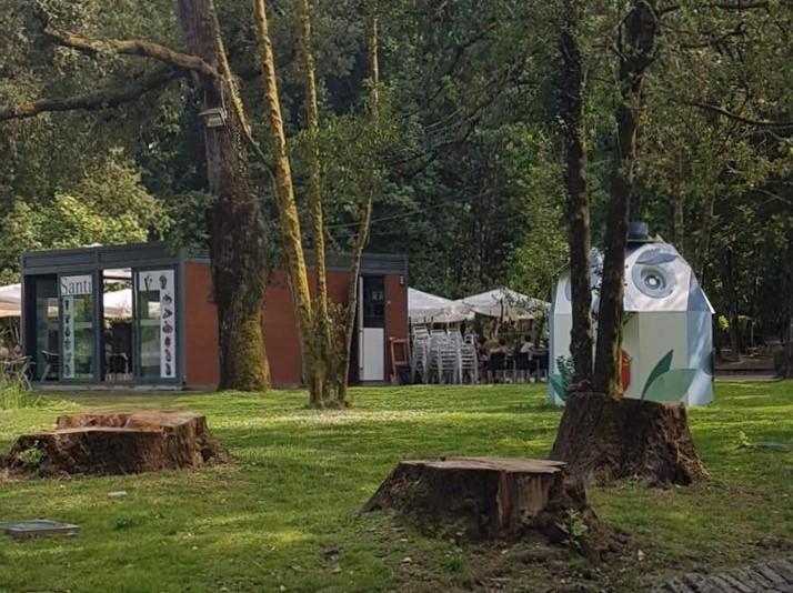 Floreados: Construindo Canteiros e Abatendo Árvores