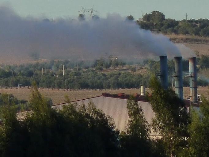 Instalação de refinaria de bagaço de azeitona em Trancoso gera contestação