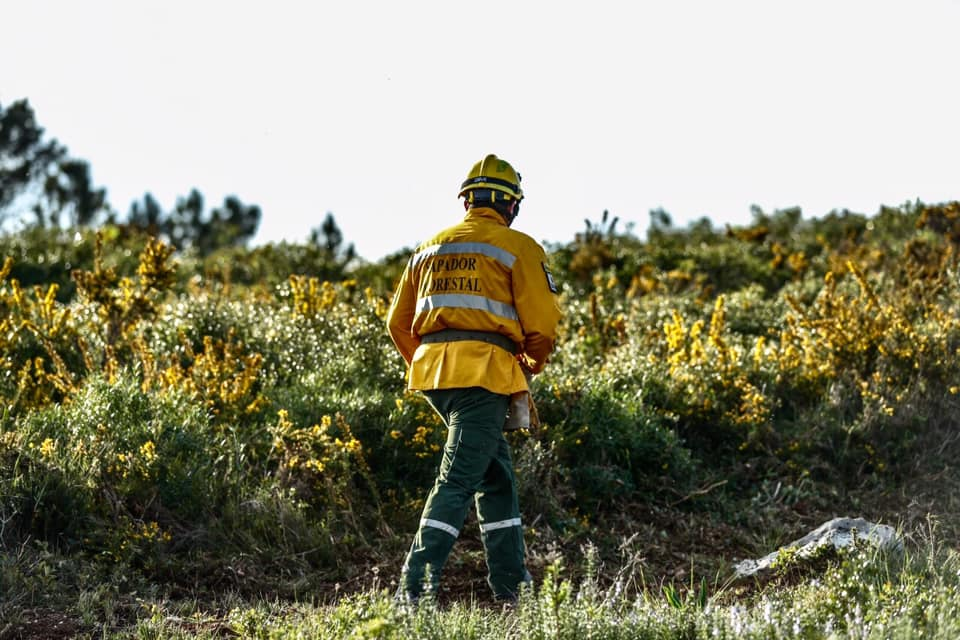 Centenas de trabalhadores da proteção civil e sapadores florestais ficam fora do suplemento de penosidade e insalubridade