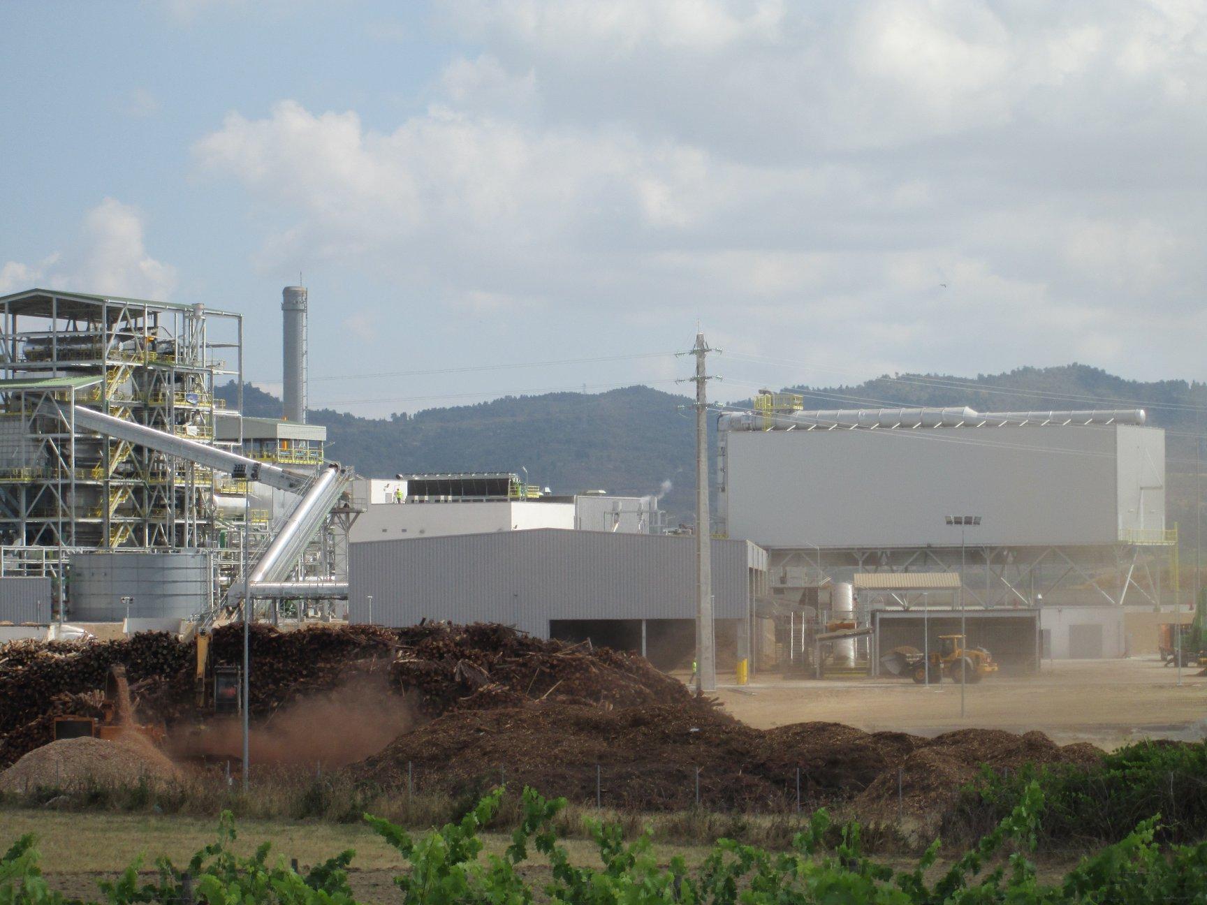 Quercus denuncia impactos provocados pela Central de Biomassa no Fundão