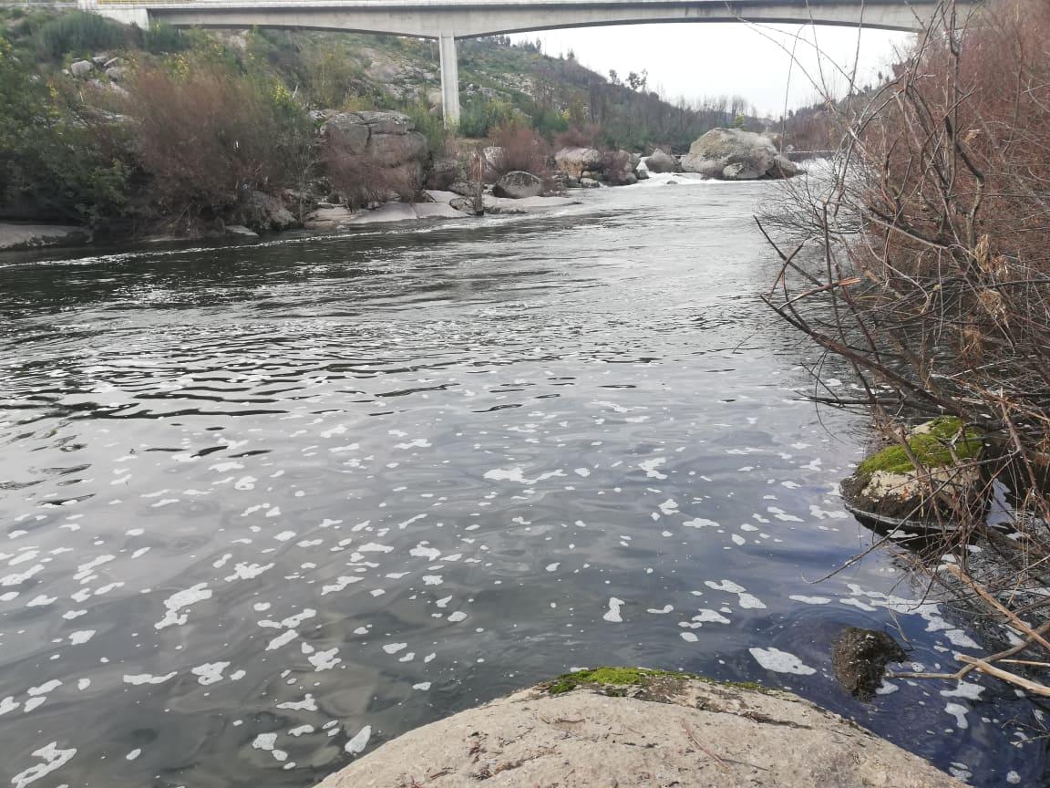 Quercus preocupada com a poluição nos rios de Viseu