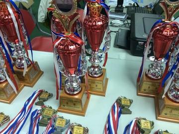 As Medalhas de Ouro da cidade de Castelo Branco…