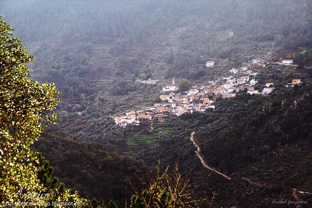A aldeia do Amieiro, um exemplo no combate às pandemias