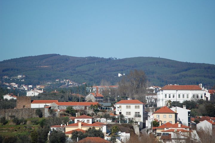 Município de Sertã não possui habitação social nem estratégia local de habitação