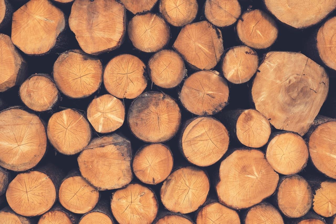 Subsídio de 226 Milhões de Euros a Centrais de Biomassa de Viseu e Fundão no Parlamento