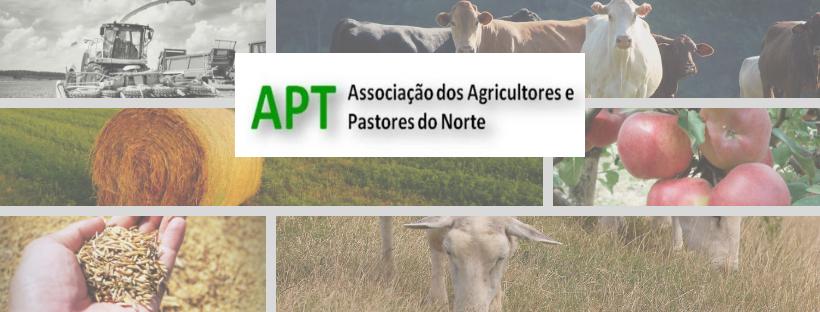 Agricultores de Vila Real com dificuldade no escoamento da produção