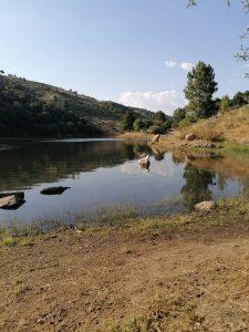 Barragem do Caldeirão, Guarda