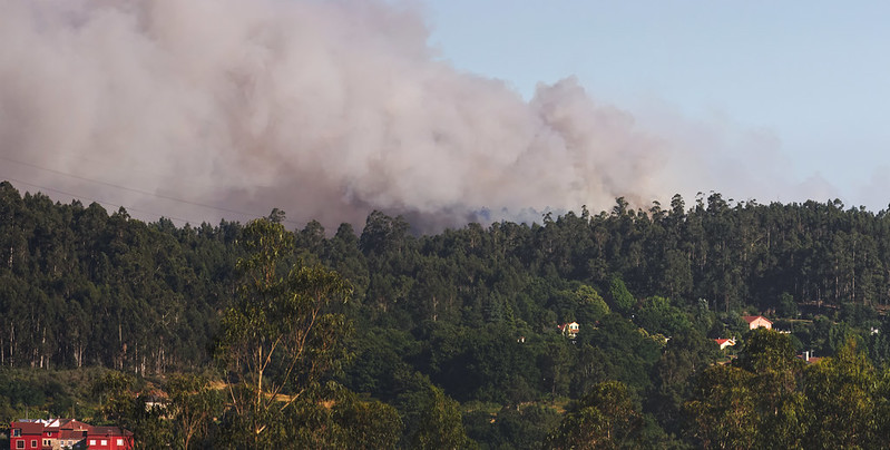 Retirada do meio aéreo de Vila Real gera contestação da Proteção Civil do distrito