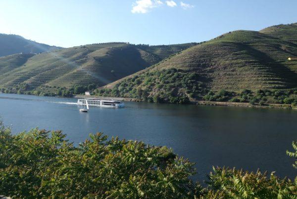 Paisagem do Douro desde Armamar