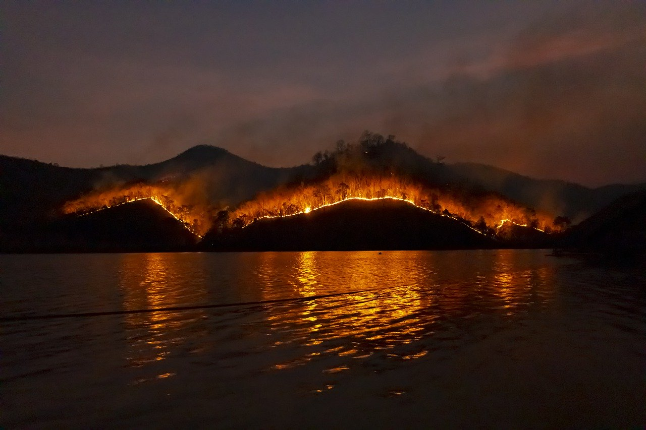 Distritos da Guarda e Viseu têm 21 municípios com planos contra incêndios desatualizados