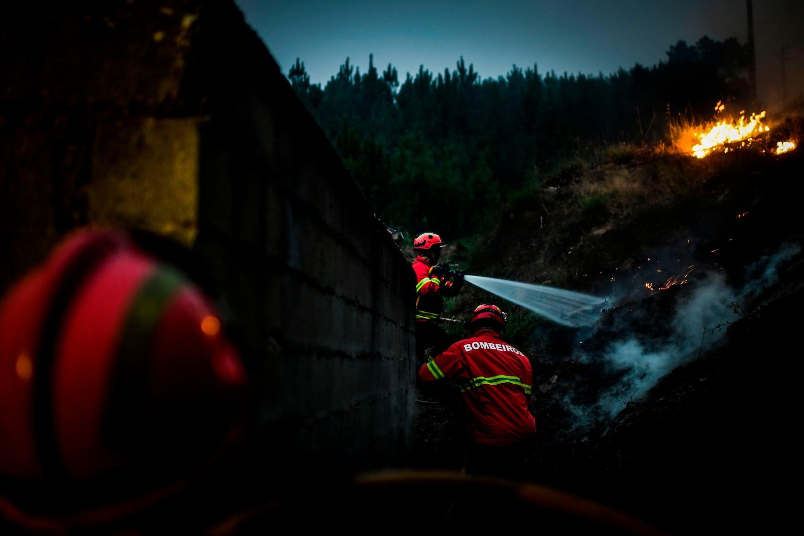 Incêndio de Oleiros queimou 2.900 hectares de pinheiro bravo