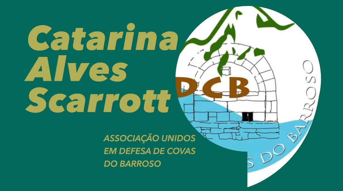"""""""Em Portugal uma licença de prospeção é uma carta branca para qualquer empresa fazer o que entender"""""""