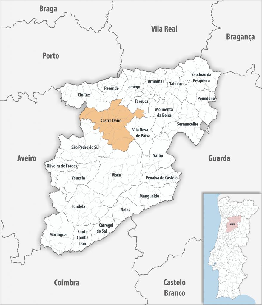 Castro Daire - Mapa