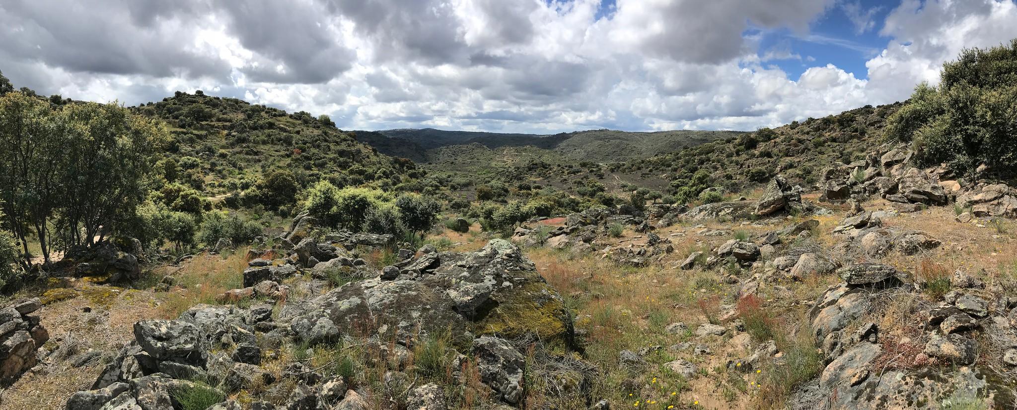 Grande Vale do Côa em série sobre o regresso da vida selvagem