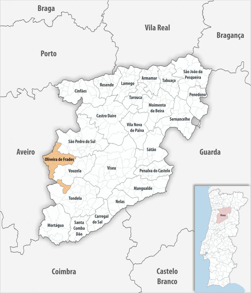 Oliveira de Frades - Mapa