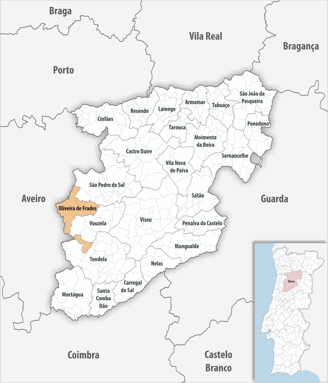 Radiografias Concelhias: Oliveira de Frades