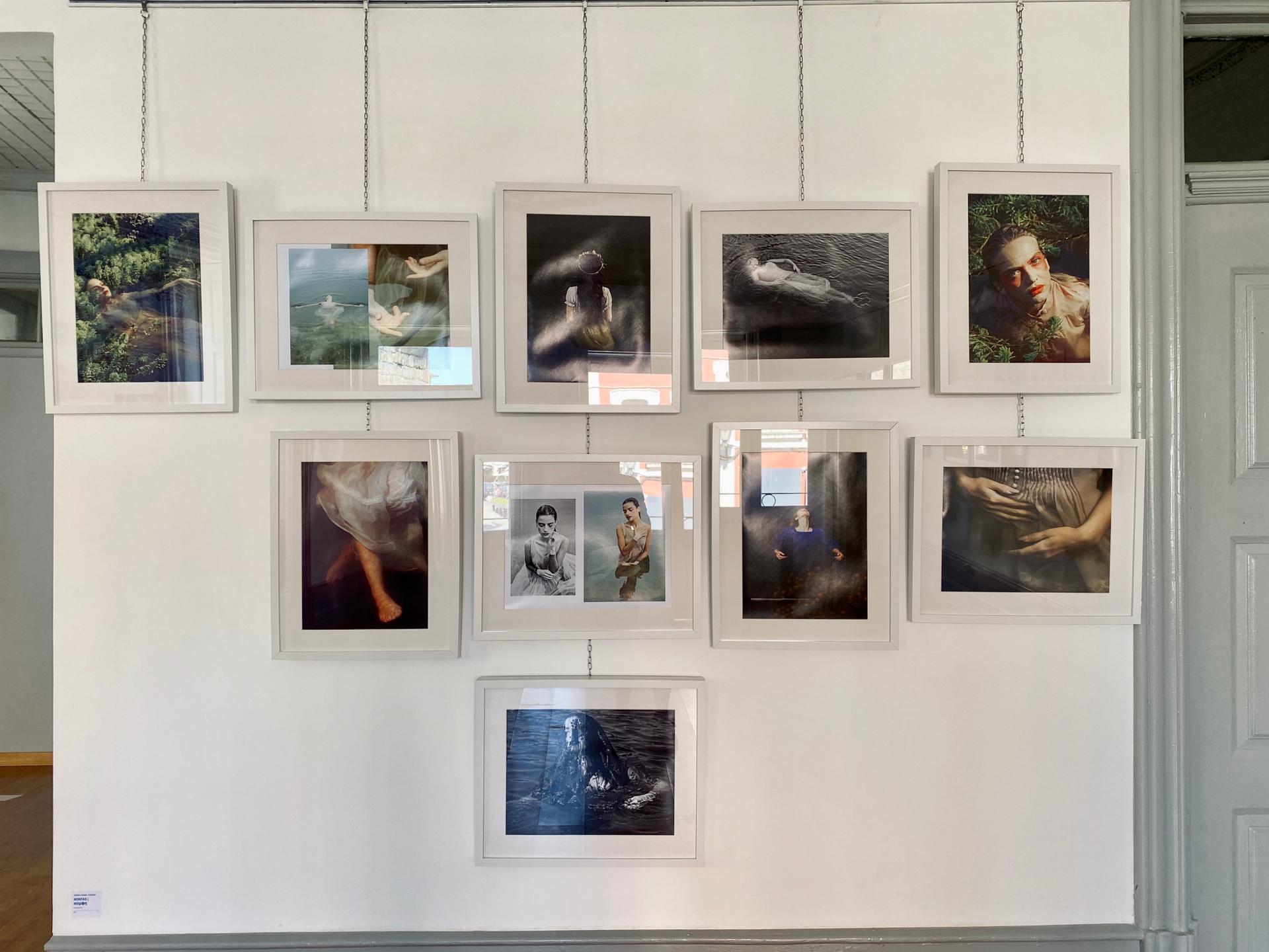 Mais de 20 artistas em exposição na Sementeira