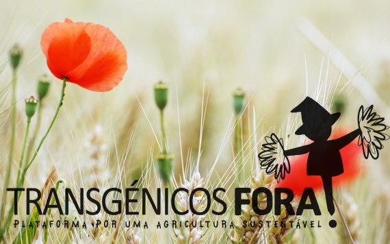 Plataforma Transgénicos Fora! | Facebook