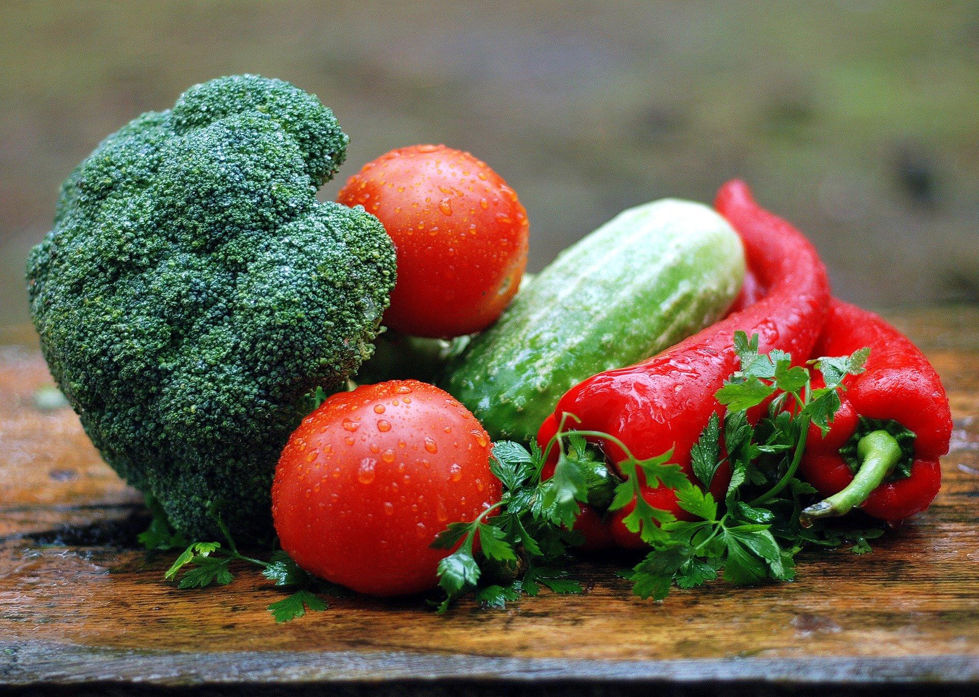 UTAD: II Jornadas de Ciências da Nutrição dedicadas à Alimentação Sustentável