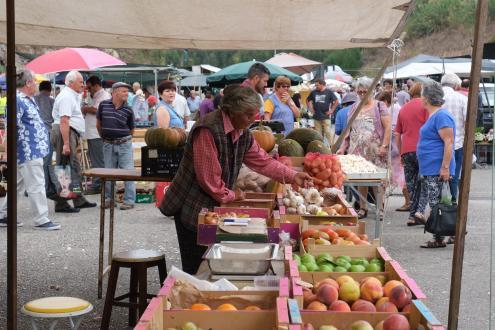 Governo recua na proibição de feiras e mercados