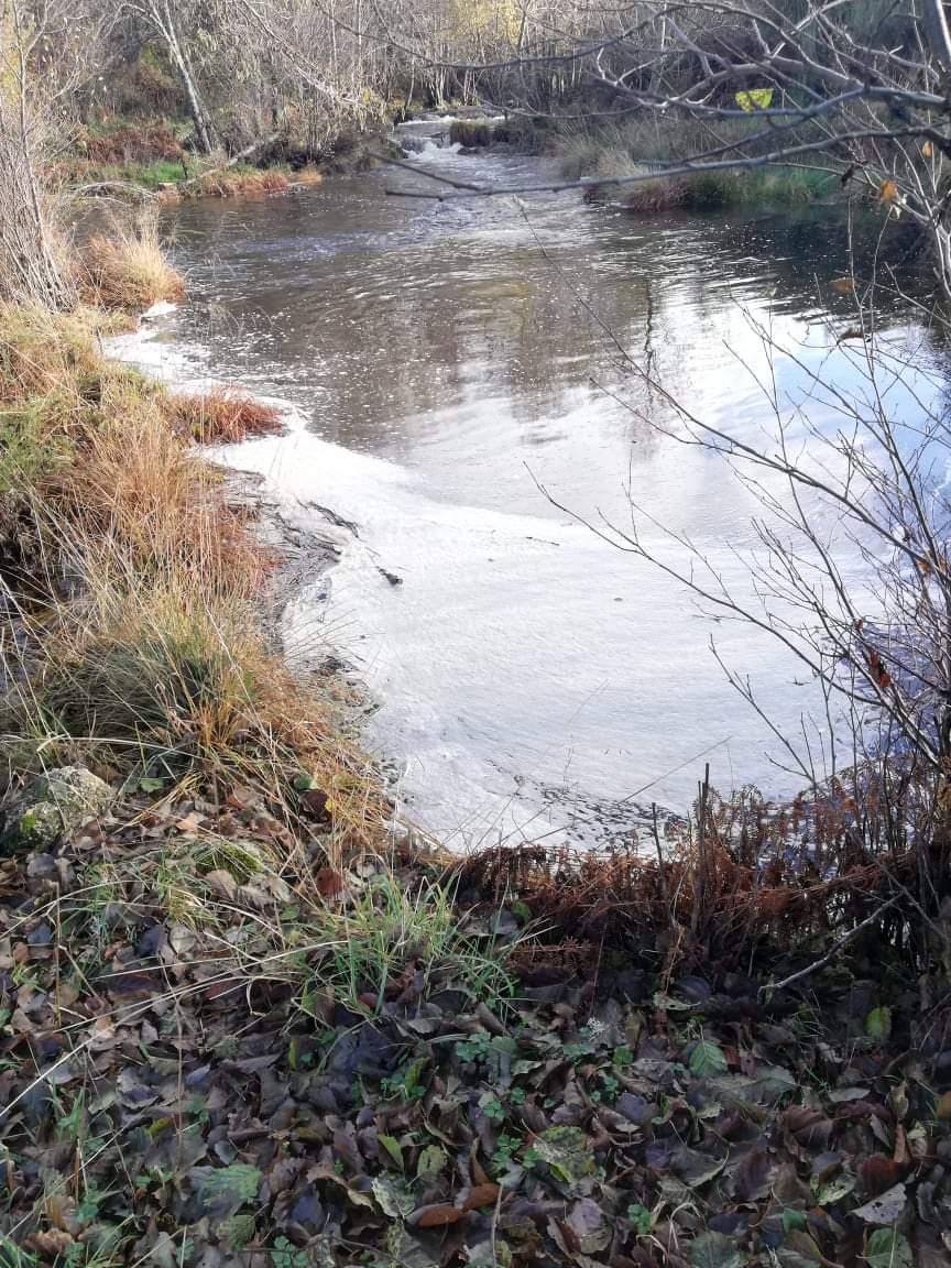 Poluição no rio Balsemão na Freguesia de Bigorne, Magueija e Pretarouca – Concelho de Lamego