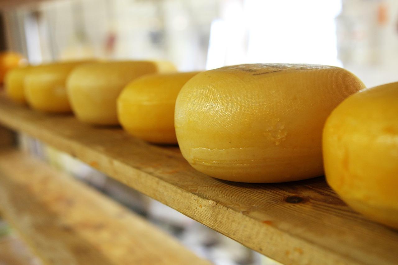 O ano letivo já começou na escola de queijeiros de Viseu