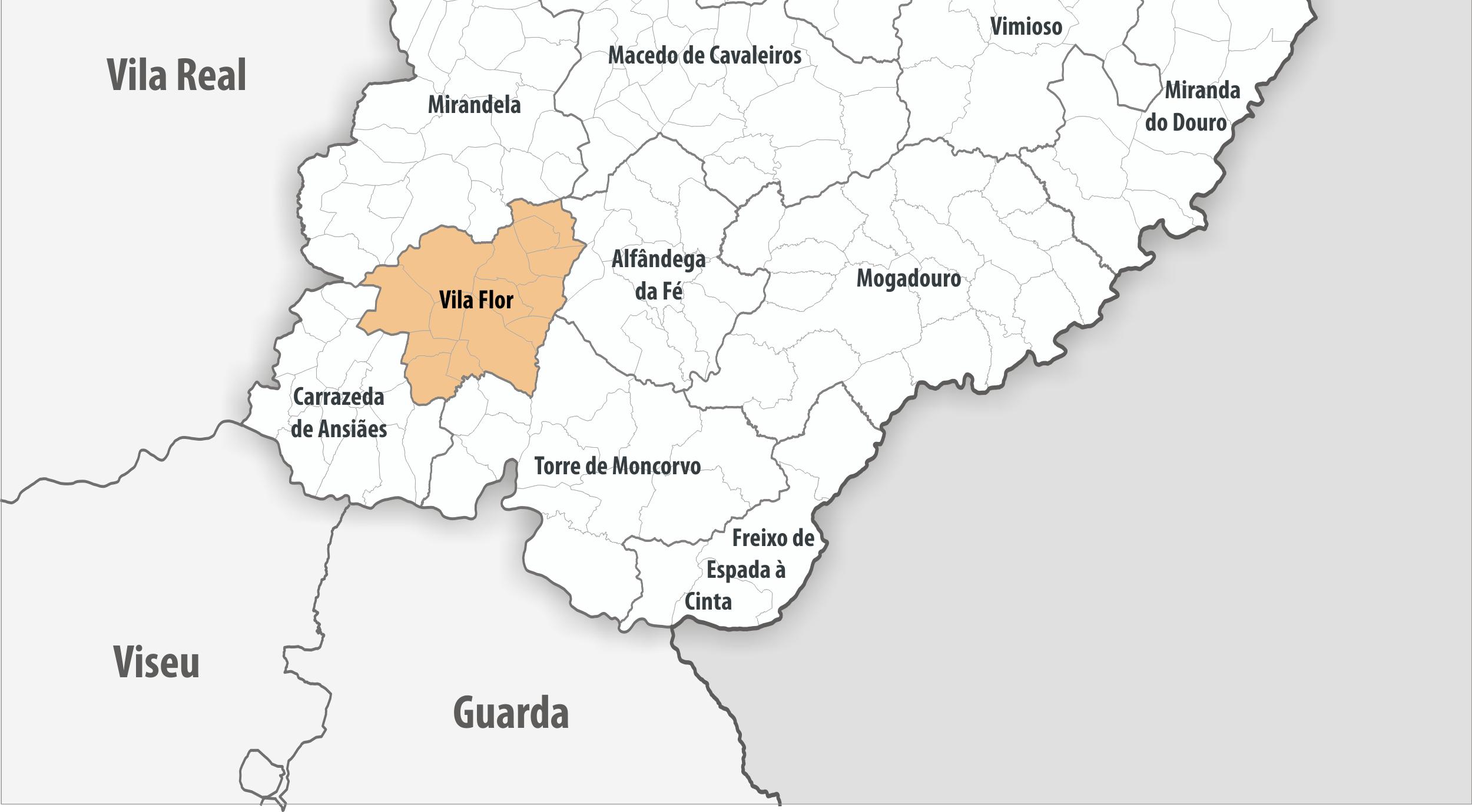 Radiografias Concelhias: Vila Flor