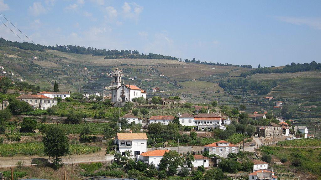 Hotel em Mesão frio pode levar o Douro a perder estatuto de património da humanidade