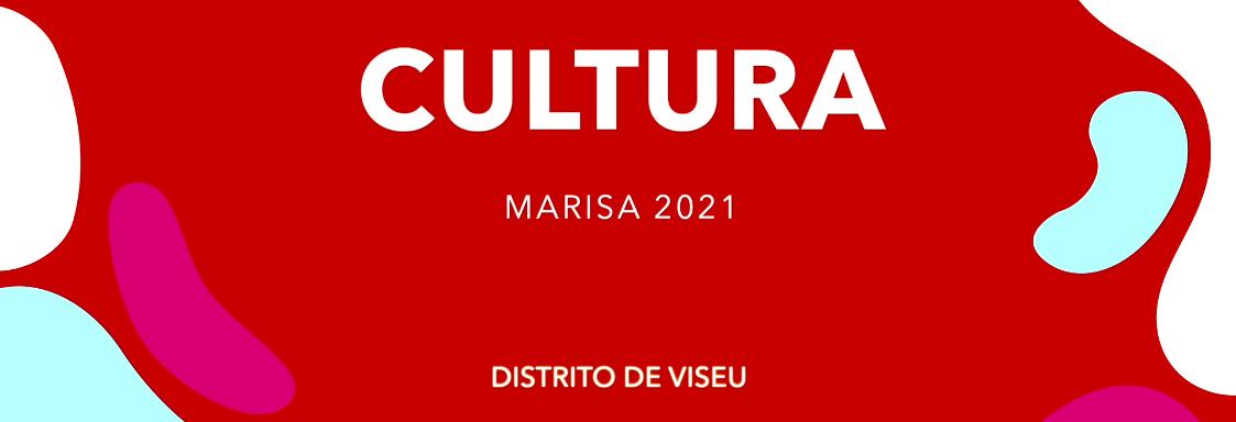Mensagem de apoio da setor da cultura do distrito de Viseu à Marisa Matias