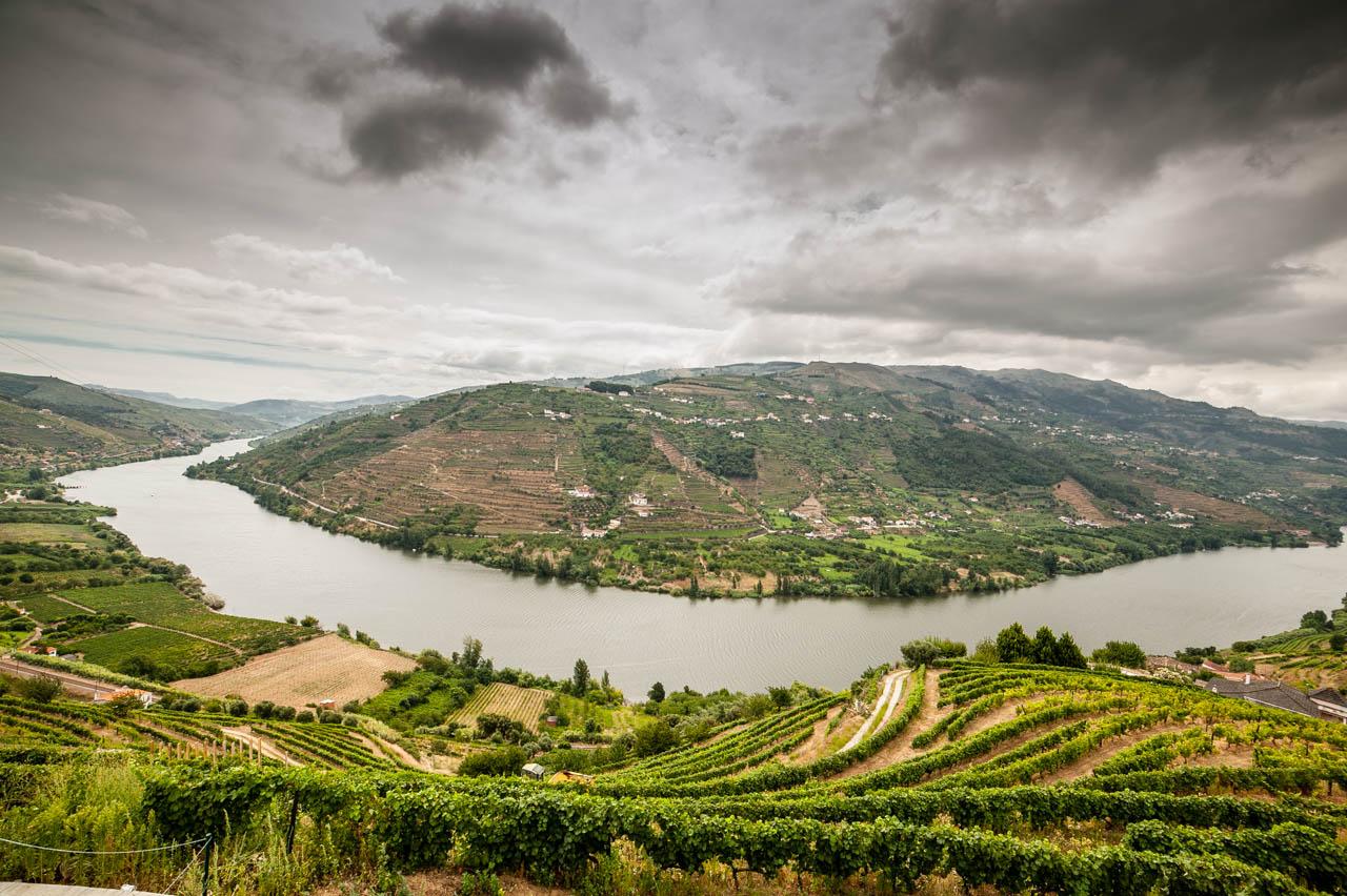 """""""O que é que o seu governo tem contra a Casa do Douro e os viticultores da região demarcada do Douro?"""""""