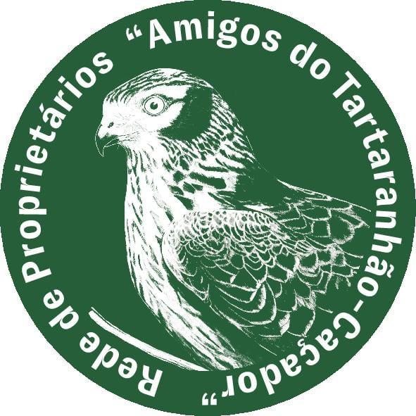 """""""Reconecta-te à Natureza – As aves fazem mais do que cantar"""" Projeto vai criar Rede de Amigos do Tartaranhão-caçador"""