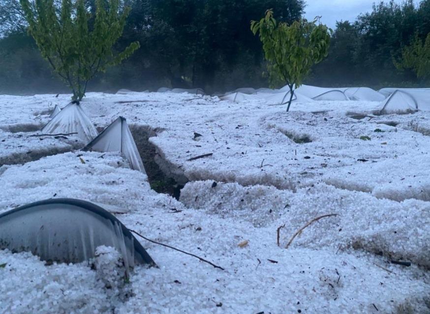 Fundão: Tempestade de granizo destrói produções agrícolas