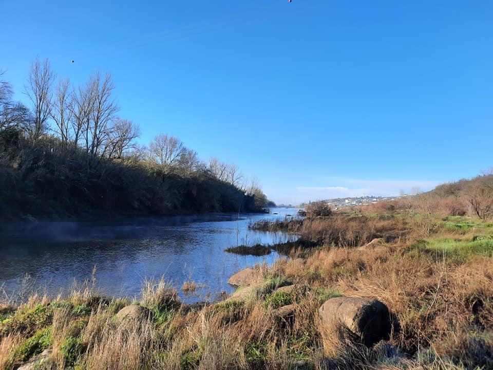 proTEJO apresenta queixa à Comissão Europeia contra Portugal e Espanha por má gestão da água da bacia do Tejo