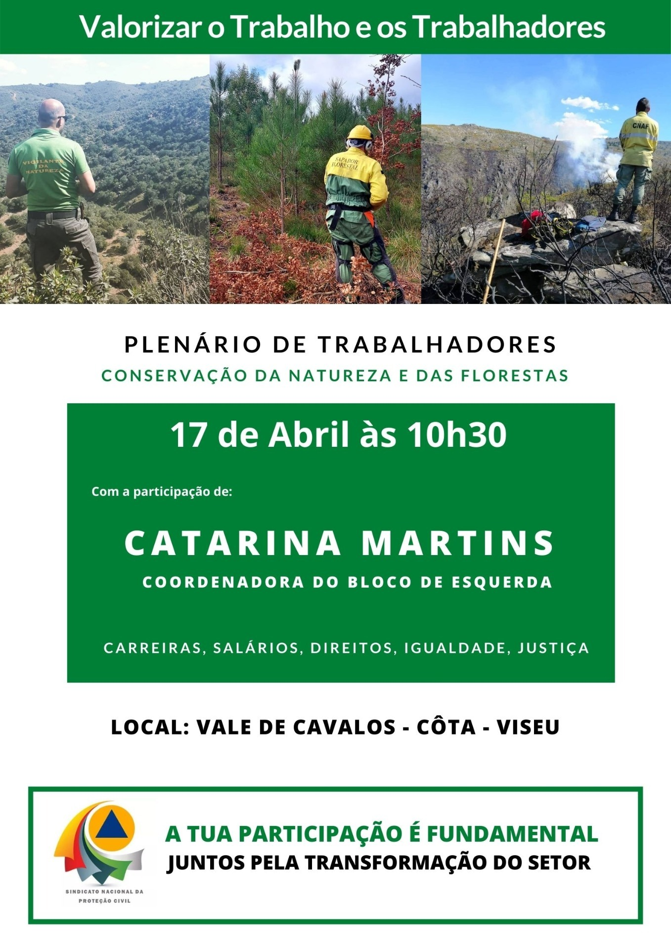 Catarina Martins vai estar em Viseu com trabalhadores da Conservação da Natureza e das Florestas