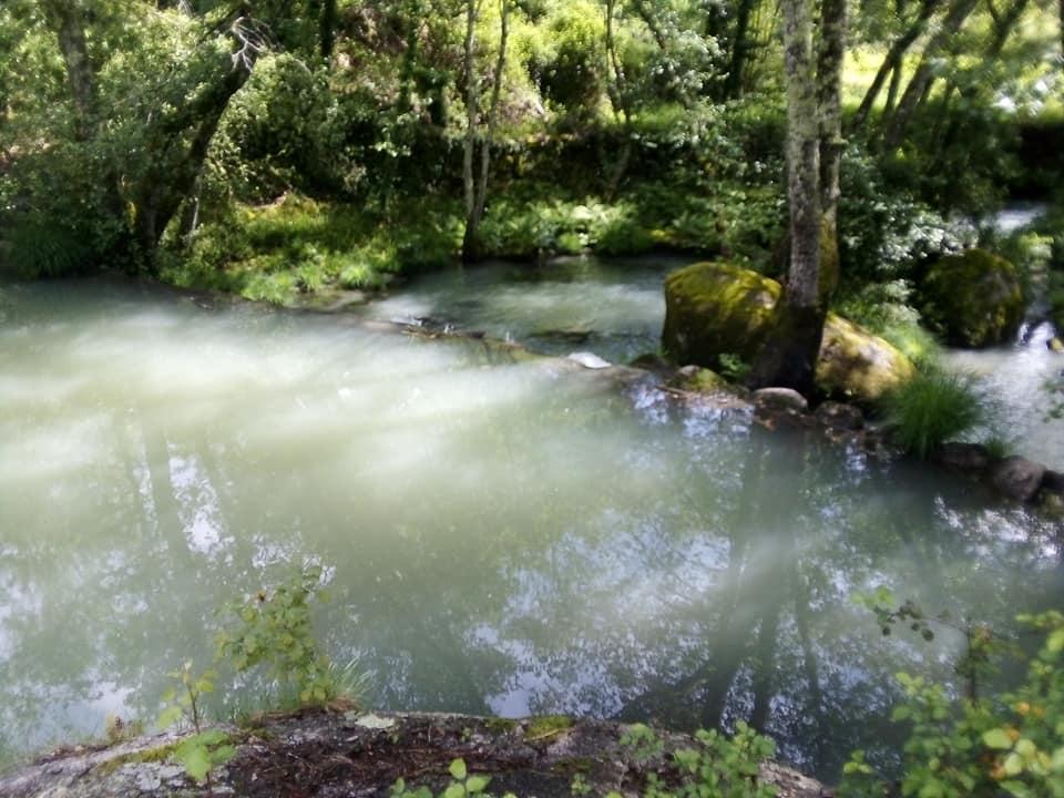 A biodiversidade da sub-bacia Hidrográfica do Dão está debaixo de ataque