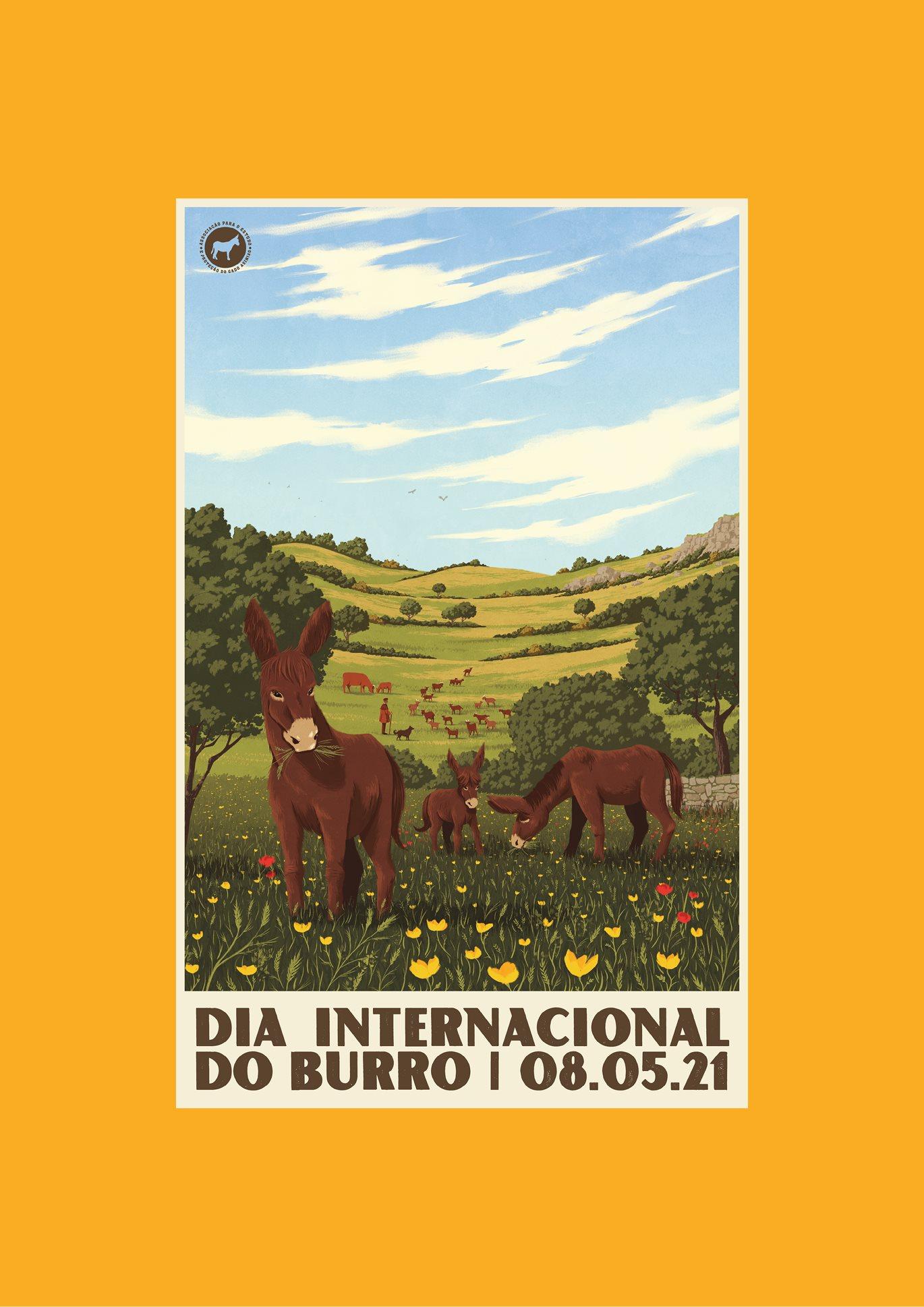 8 de Maio: Dia Internacional do Burro