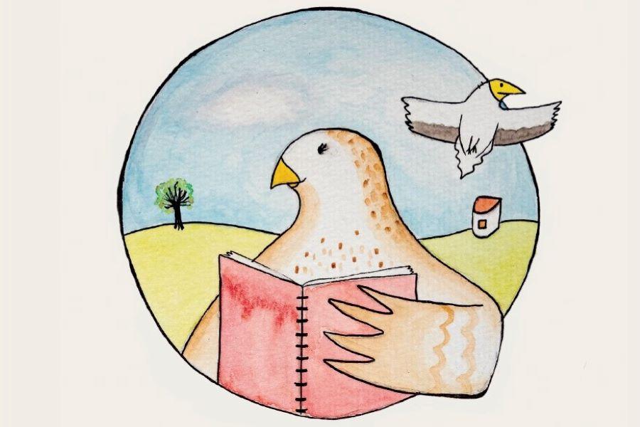 """Livro infantil """"O Diário Secreto da Águia-de-Bonelli"""" editado pela Palombar lançado no âmbito das comemorações do Dia do Parque Natural do Douro Internacional"""