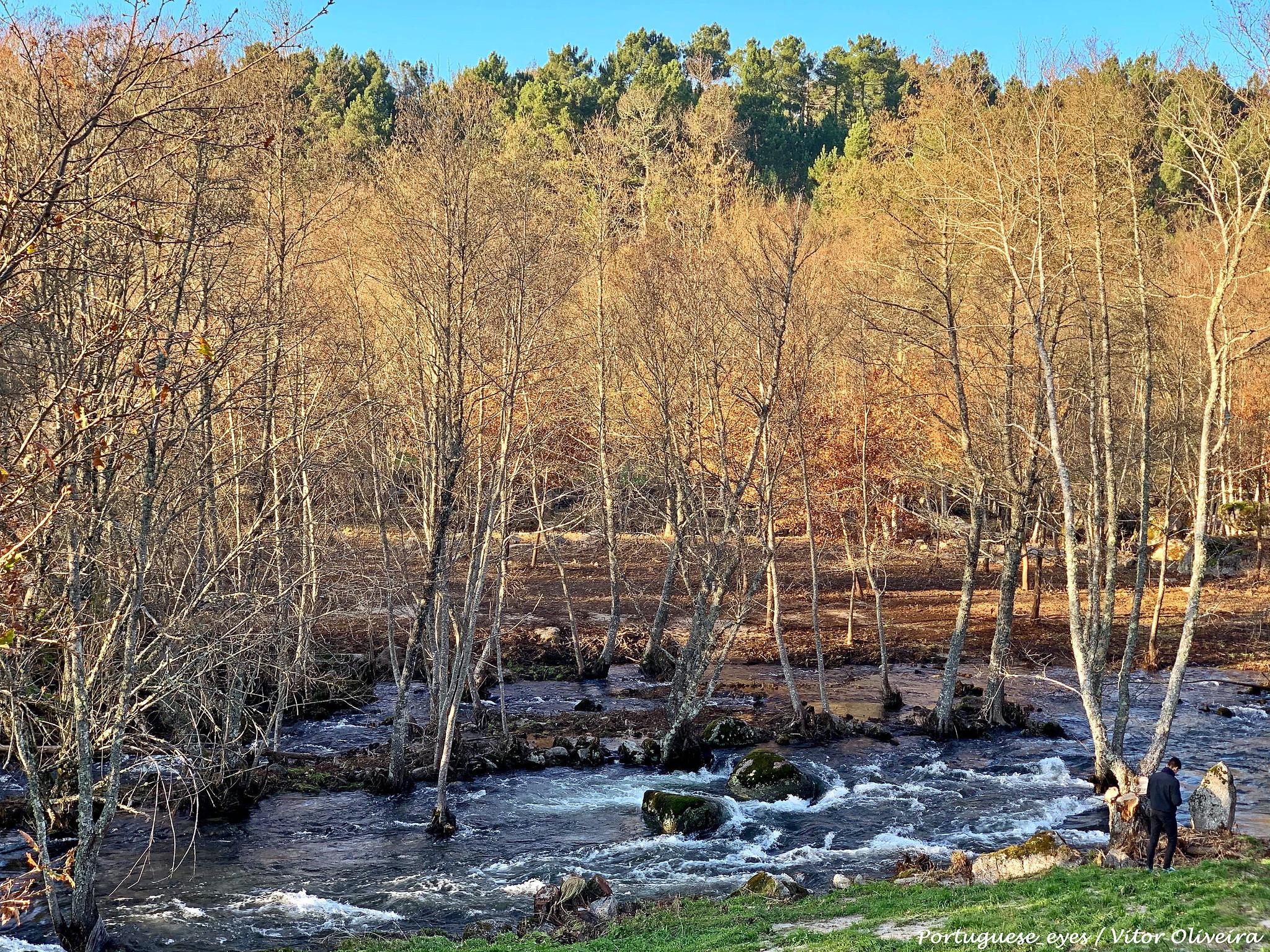A Importância do Rio Paiva na preservação de habitats e espécies