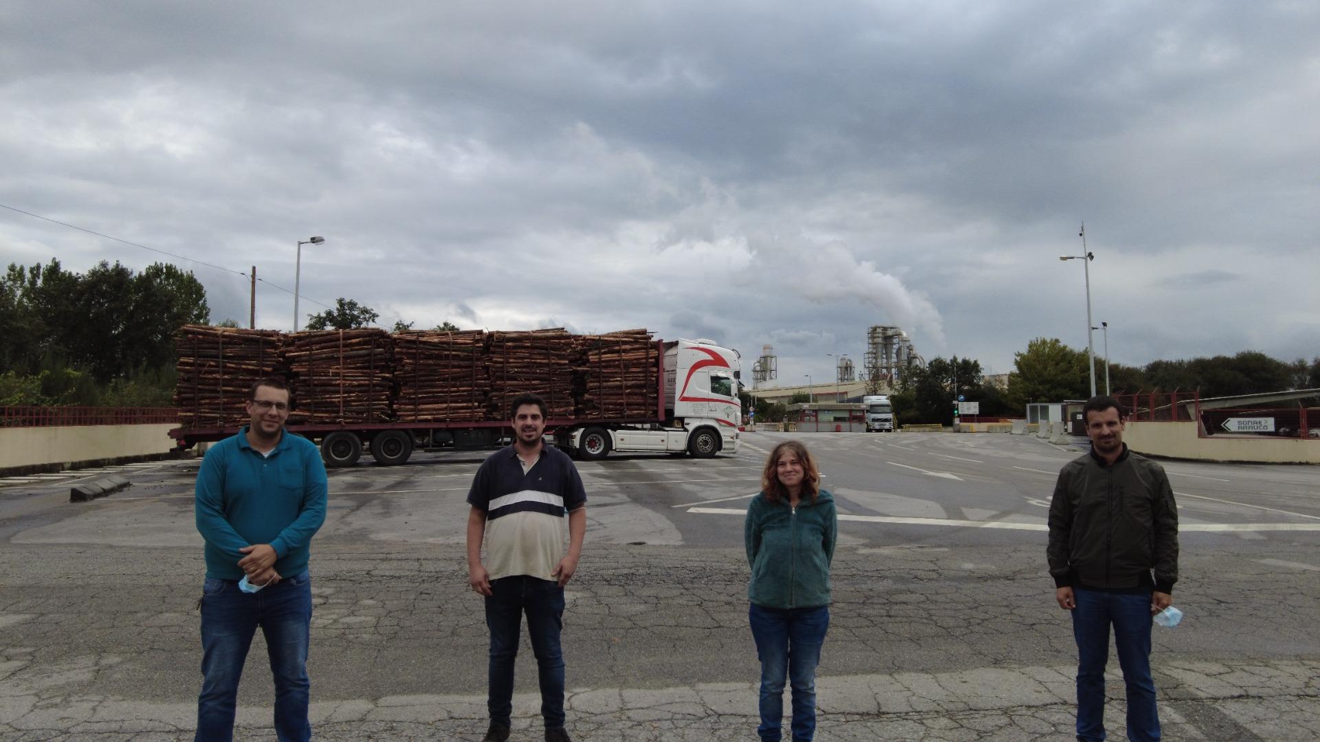 Mangualde: dúvidas sobre plantação de 5% da área total do concelho e um total de um milhão de árvores a plantar