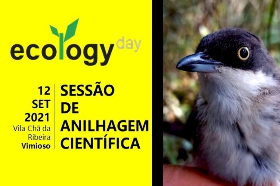 Palombar comemora Dia da Ecologia com sessão de anilhagem científica e divulgação de conteúdos de sensibilização ambiental