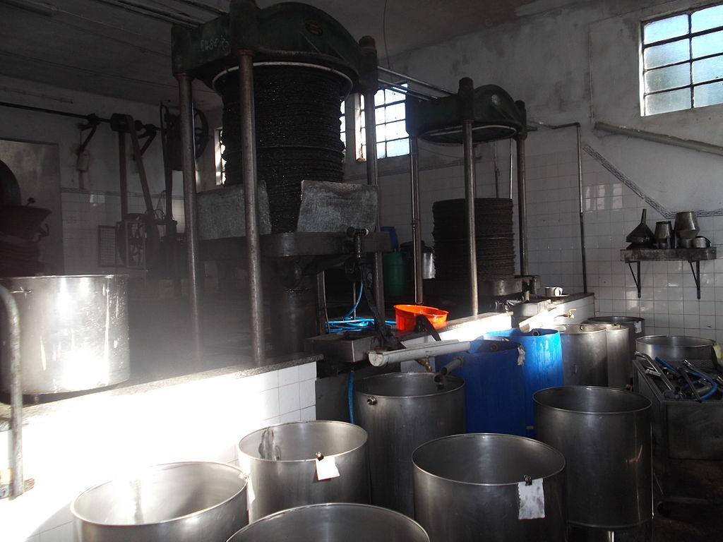 Carviçais: população não quer fábrica de transformação de bagaço